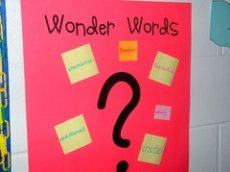 Wonder Words